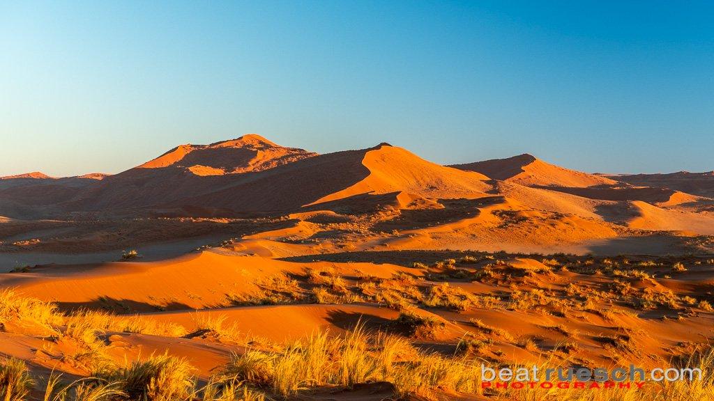 Sonnenaufgang in den Dünen