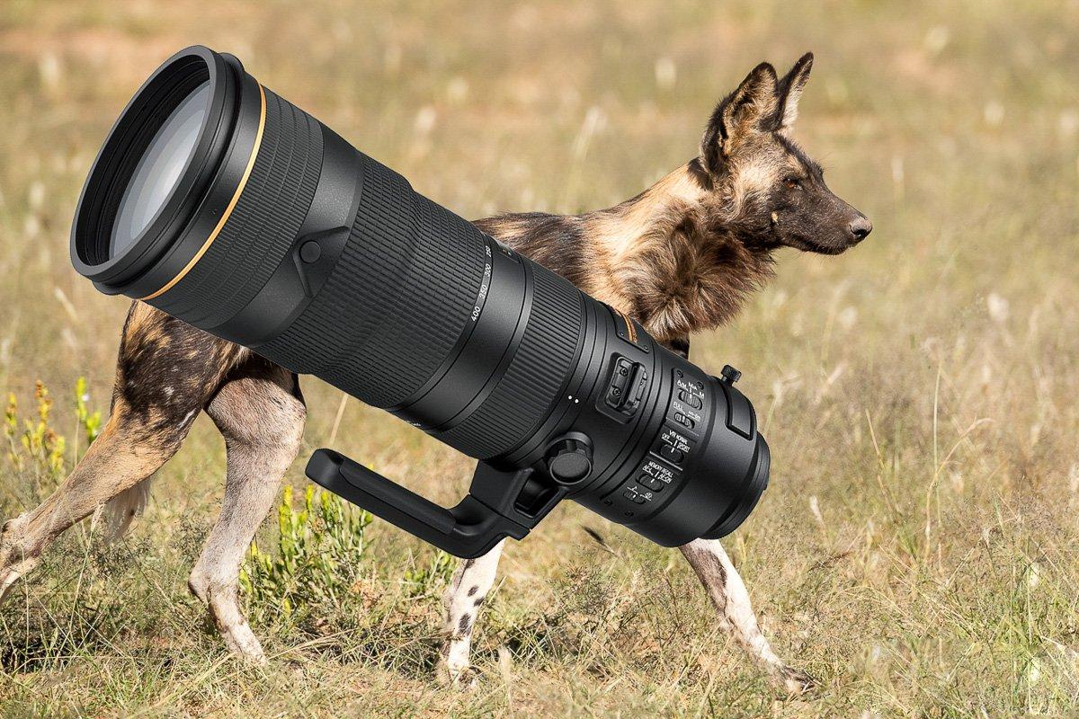 Foto Objektiv: Nikon