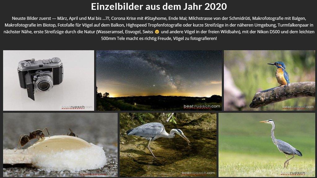 200611 NeusteBilder 2020