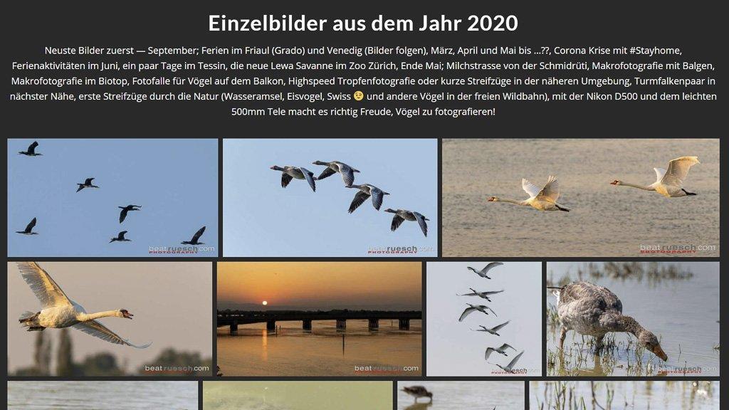 200919 NeusteBilder 2020