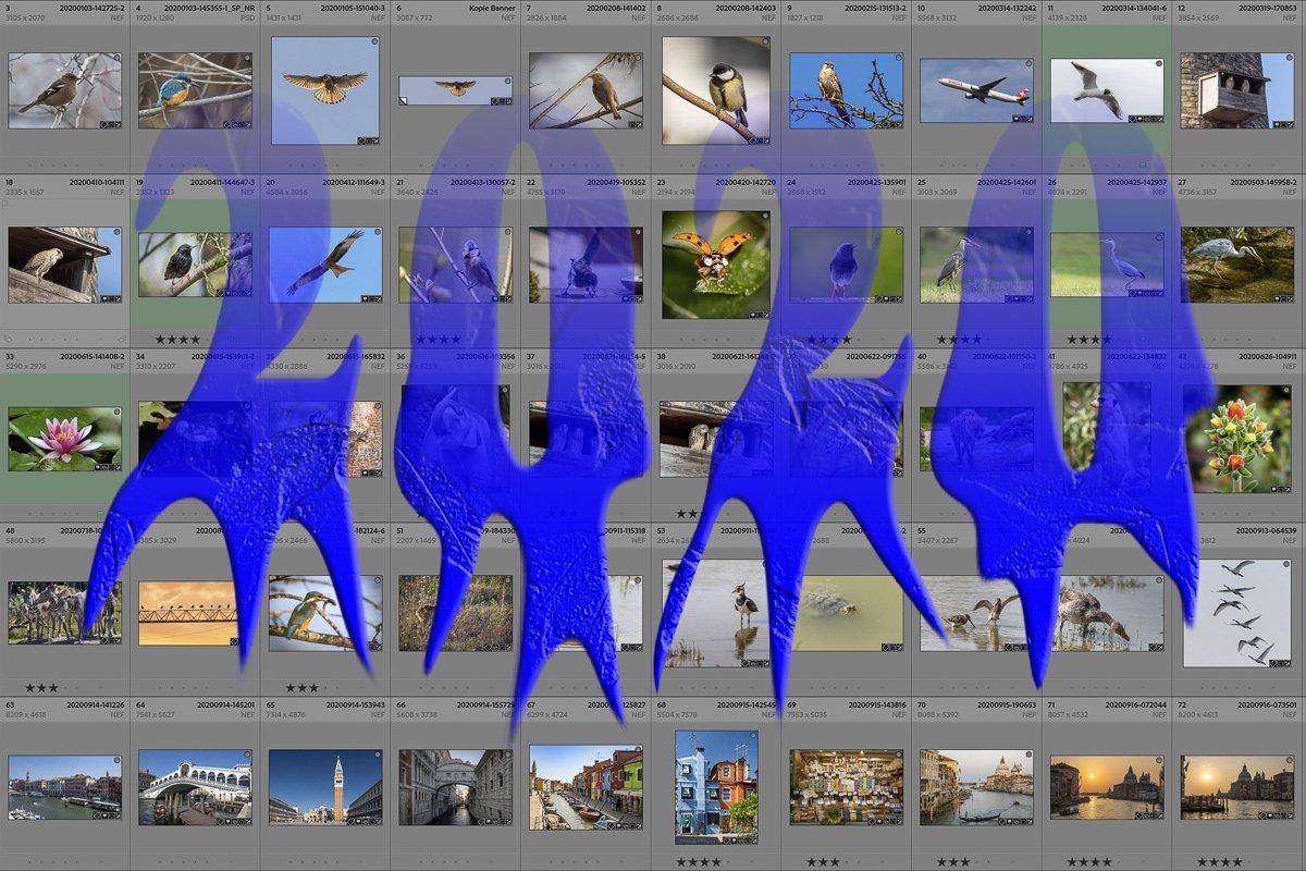 20201228-Beitragsbild