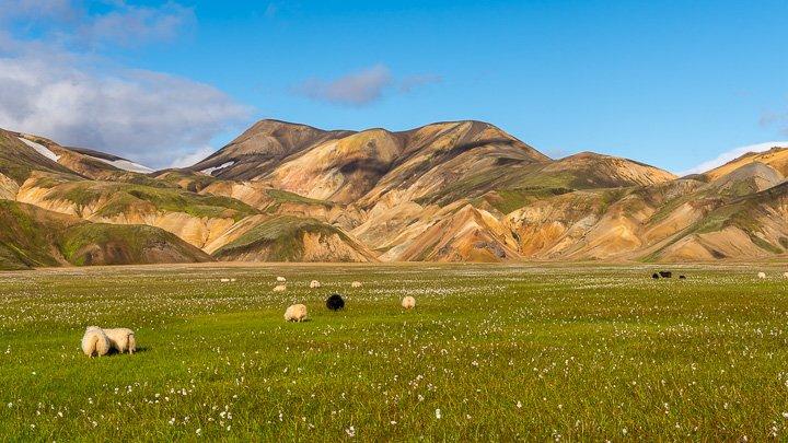 Fotoreise ins Hochland von Island, August 2016